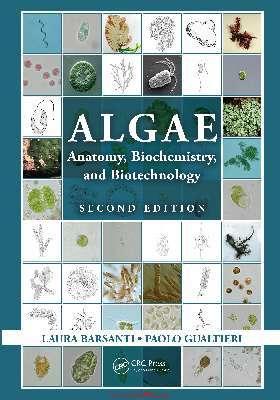 ALGAE ANATOMY, BIOCHEMISTRY, AND BIOTECHNOLOGY
