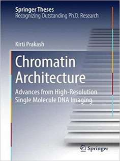 Chromatin Architecture:Advances From High-resolution Single Molecule DNA Imaging