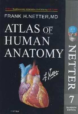 Atlas of Human Anatomy Netter 2019