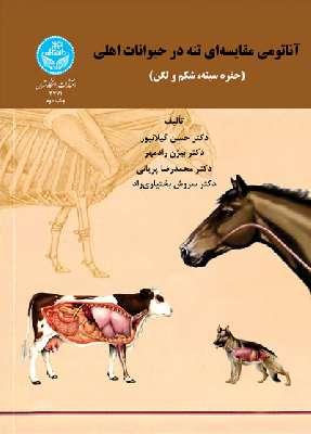 آناتومی مقایسهای تنه در حیوانات اهلی (حفره سینه، شکم و لگن)